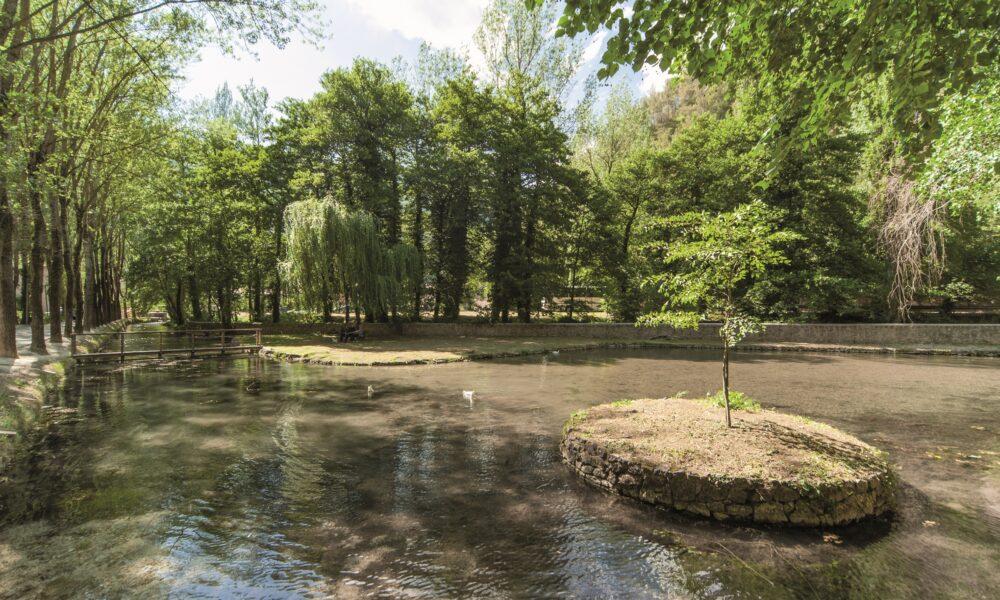 Veduta fluviale del bosco attorno alle fonti di Valcasana.