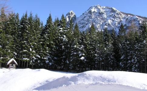 Montagna con neve. Fonte: Valli Parco dell'Aveto