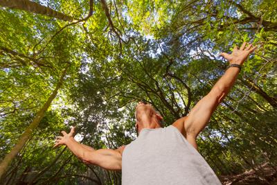 Foreste preistoriche. Uomo e alberi, fonte: ufficio stampa isole Canarie @hellocanaryislands