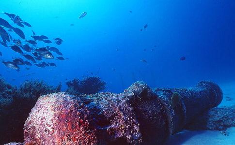 Archeologia subacquea: morto George Bass. Fotografia di relitto subacqueo, via Wikimedia Commons.