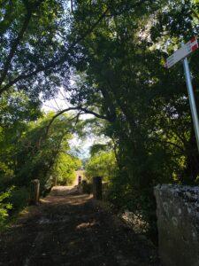 Cammino dei Briganti, tra Nesce e Villerose