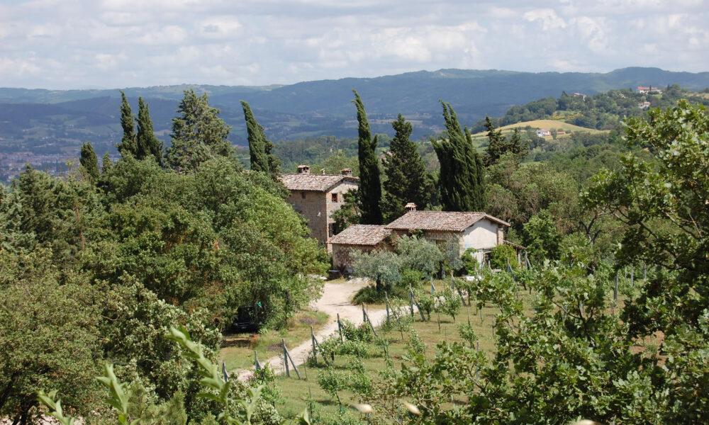 Parco di Archeologia Arborea Fonte: Umbria Tourism