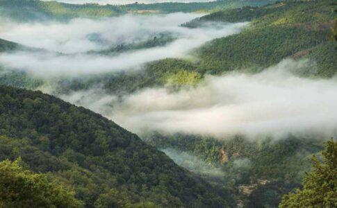 Monte Peglia, Riserva della biosfera unesco