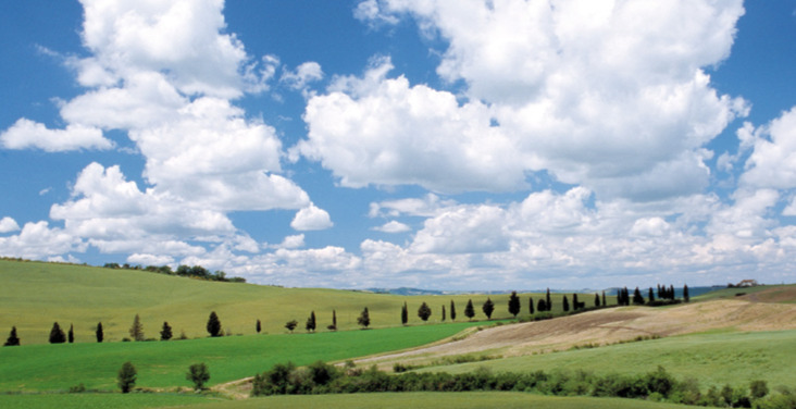 In bici lungo le campagne della Via Francigena. Via Terre di Siena.