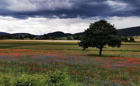Umbria, Parco di Colfiorito