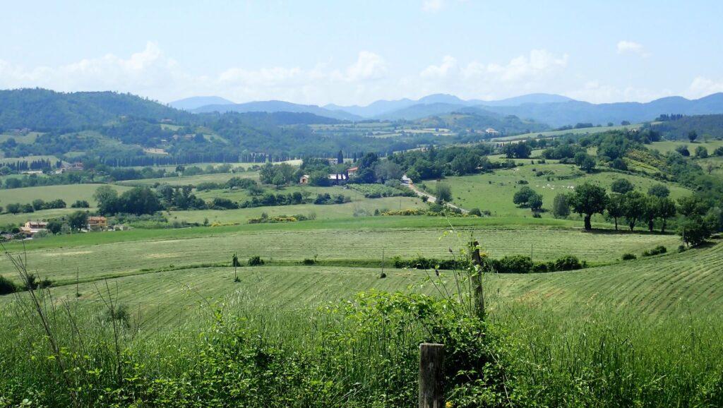 Il territorio del Mugello (ph. Laura Marina Mandelli).