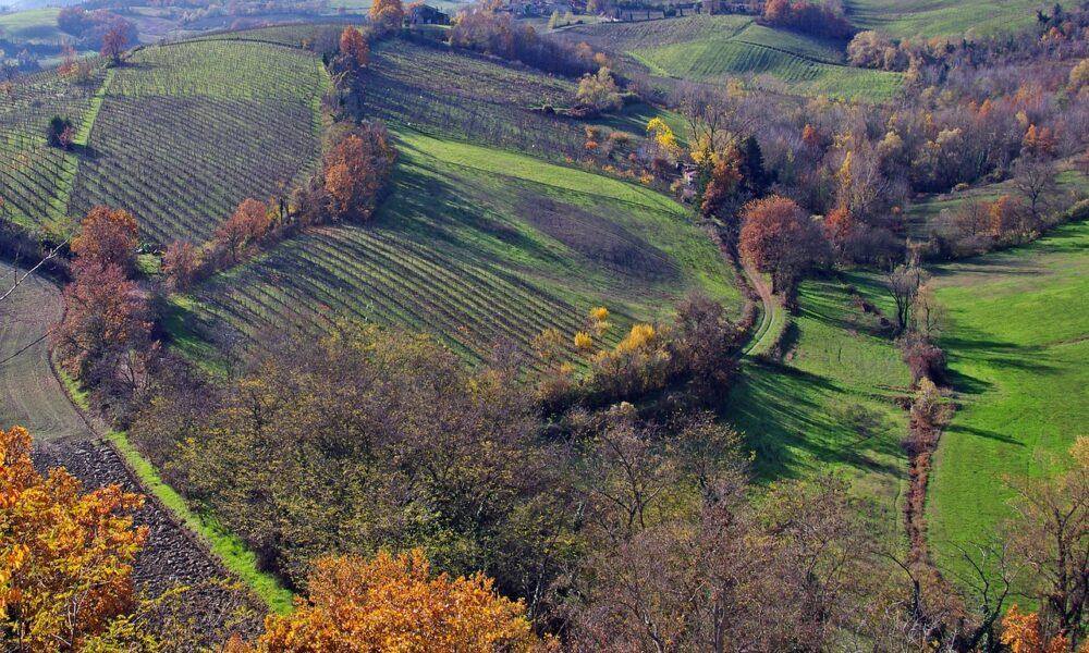 Parma, Langhirano
