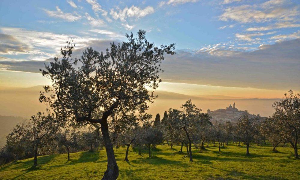 Trevi Fonte: Umbria Tourism