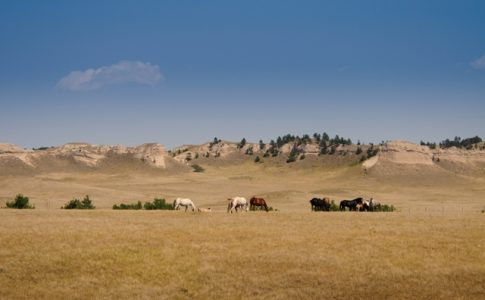 oyate trail via great american west