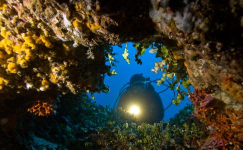 Sardegna immersioni Credits: frantiseKhojaysz/shutterstock