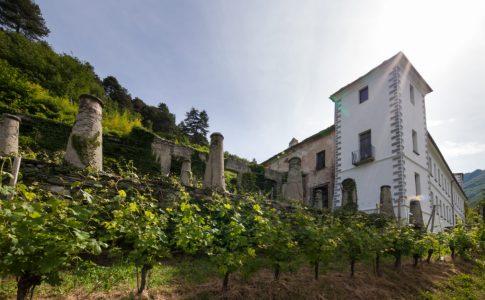 viticoltura val d'aosta via love val d'aosta