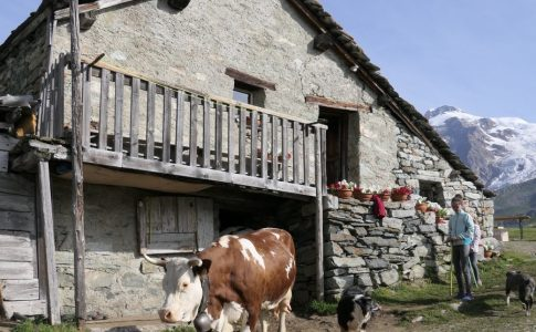 Valle d'Aosta Fonte: Valle d'Aosta booking