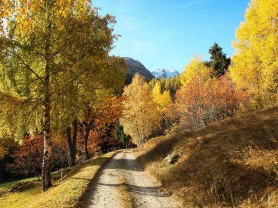 Valle d'Aosta autunno