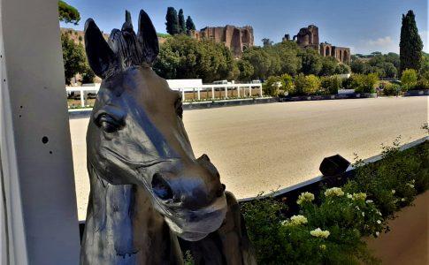 circo massimo equitazione © michele piatti tgtourism