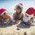 Natale: aumentano gli italiani che scelgono viaggi nei luoghi caldi