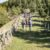 Sentiero Italia come la via Francigena: scoprire l'Italia a piedi nel più lungo trekking al mondo